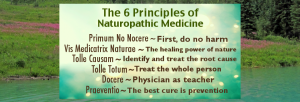 6-principles-of-naturopathic-medicine-new-feature